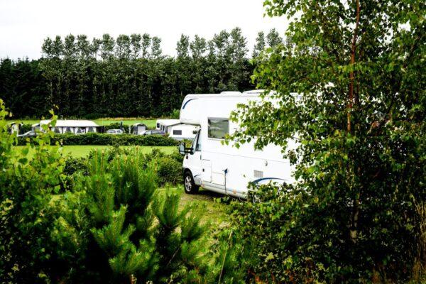 Albertinelund Camping-02296 (Medium) (1)