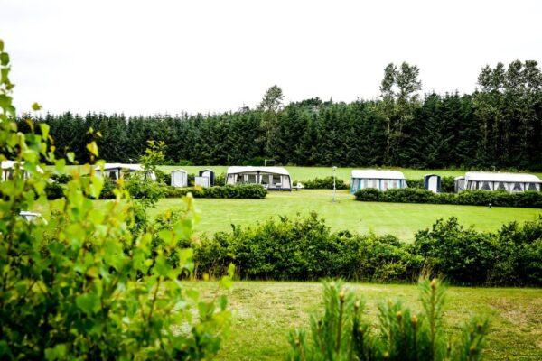 Albertinelund Camping-02300 (Medium) (1)