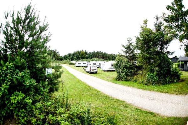 Albertinelund Camping-02400 (Medium)